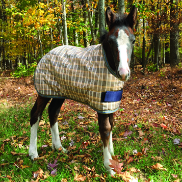 200 Fill Expand-O-Blanket Foal Pony Turnout