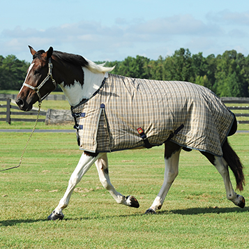 400 Fill Heavyweight Baker Turnout Blanket