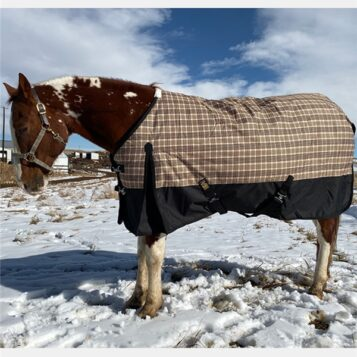 Black Label Heavy Weight Turnout Blanket 400 Gram